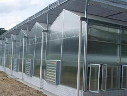 温室大棚建造大棚内养殖方法  