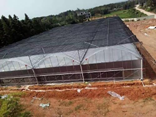 温室蔬菜大棚玻璃连栋智能温室建设发展前景分析