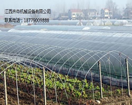 单体温室大棚