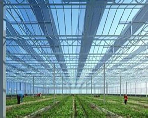 合肥玻璃温室大棚