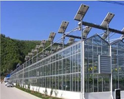 山东玻璃温室大棚