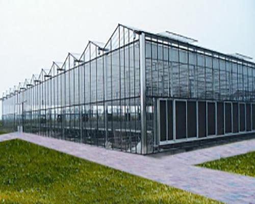 萍乡玻璃温室大棚