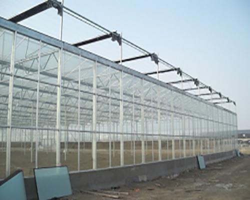 景德镇玻璃温室大棚