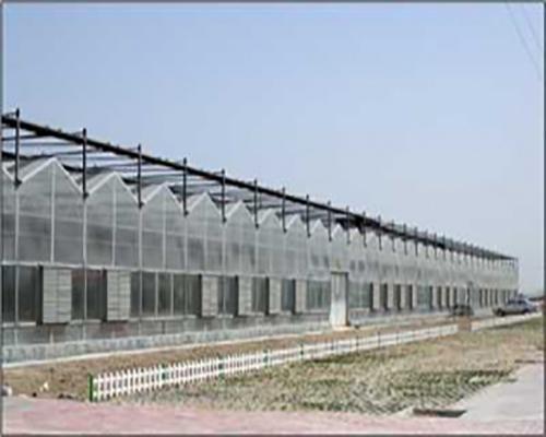 九江玻璃温室大棚
