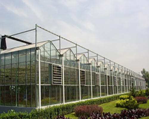 南昌玻璃温室大棚