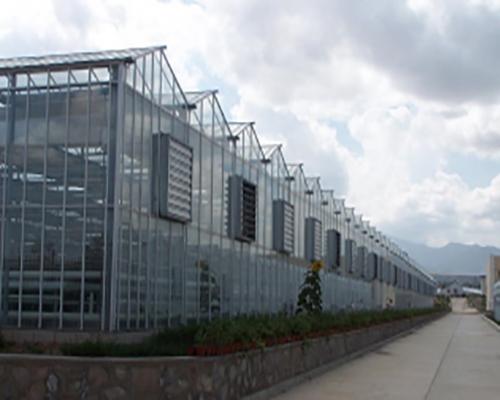 江西玻璃温室大棚