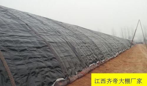 大棚保温被的使用和保养