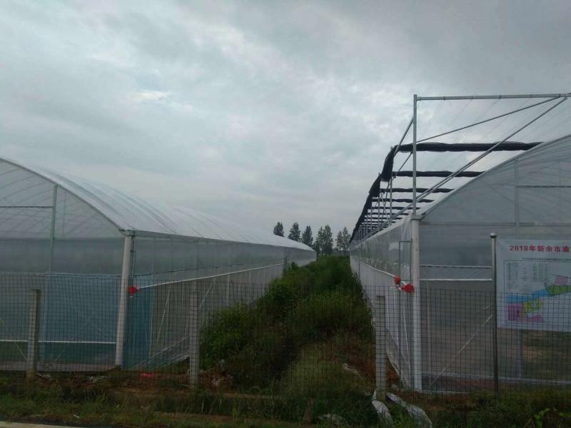 温室大棚附属设施的保养及维护