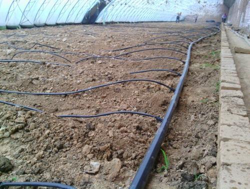 上海温室大棚滴灌系统