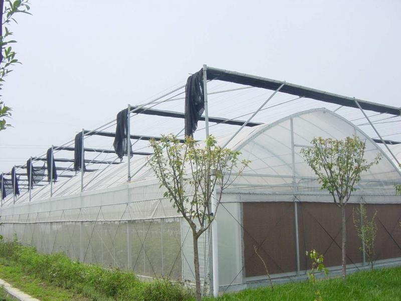 北京齐帝温室大棚微灌优势