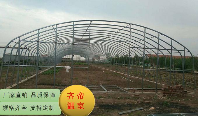 赣州单体大棚 新型大棚骨架 蔬菜花卉大棚