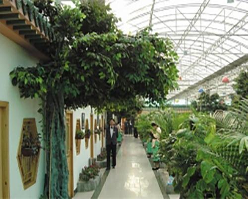 云南生态餐厅