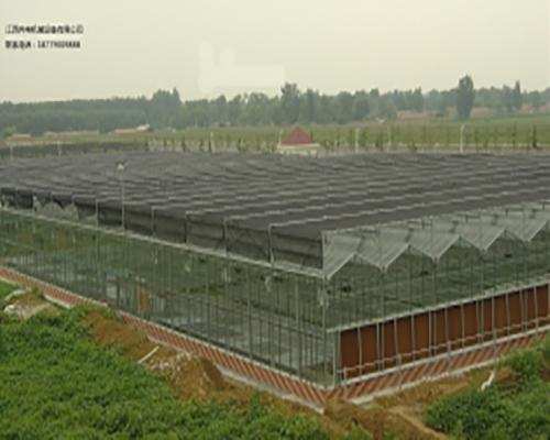 赣州玻璃温室大棚