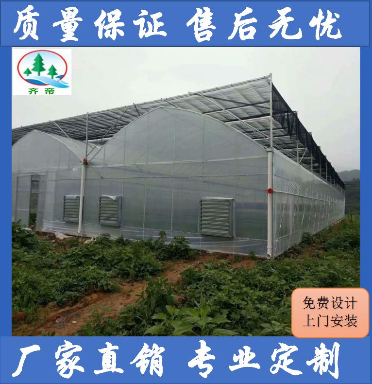 瑞金阳光板温室大棚 外遮阳内保温阳光板温室大棚连栋蔬菜大棚