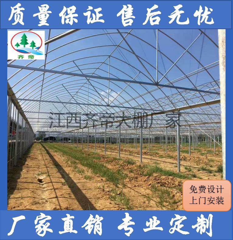 厂家订制安装各式种植温室大棚 养殖温室大棚 各类温室大棚骨架