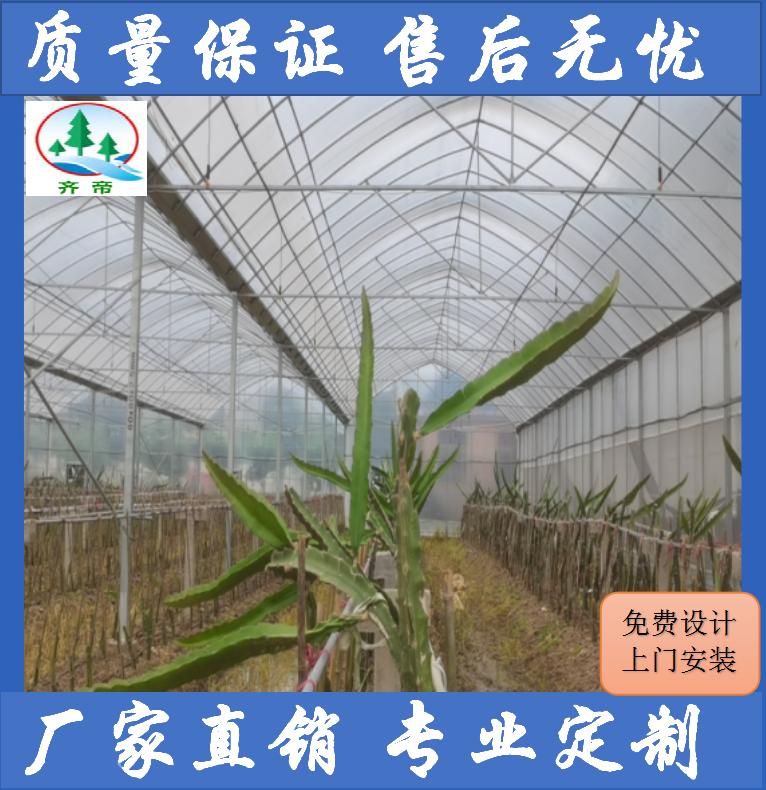 九江温室大棚 火龙果基地 大棚 水果大棚