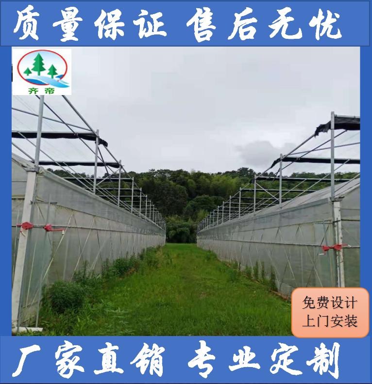 南昌县温室大棚 大棚建造 设计+安装+施工+维护一条龙