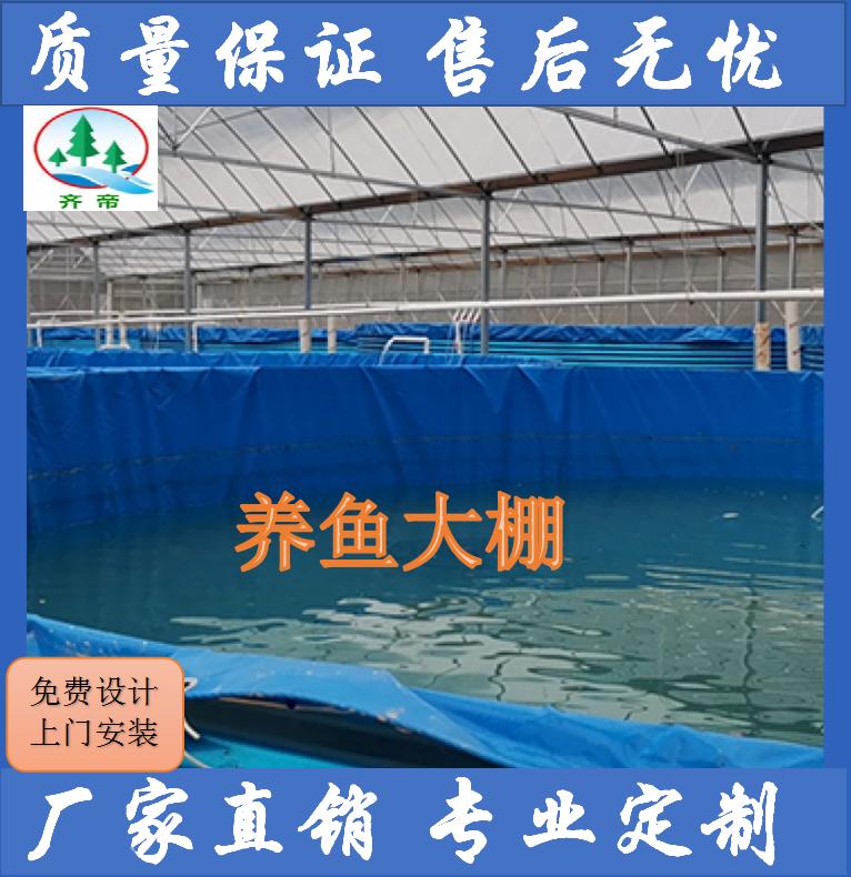 工厂化 养鱼大棚 养殖